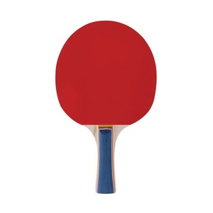 namizni tenis bat Spokey USPOSABLJANJE PRO, Spokey