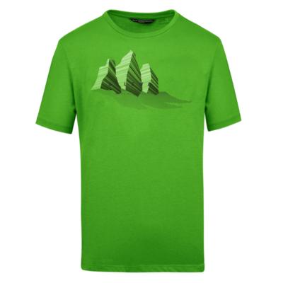 majica Salewa Linije grafični Dry M 28065-5649