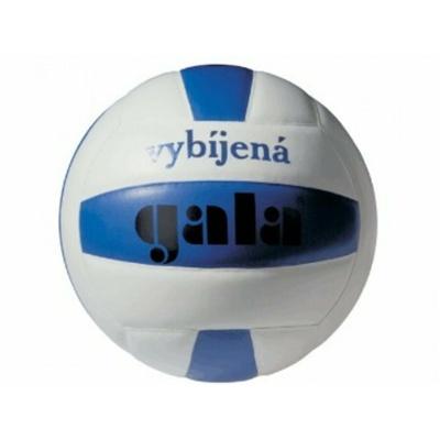 Odbojka Gala mini usposabljanje Dodgeball, Gala